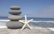 starfish and balanced stones on driftwood at the beach