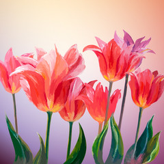 Panel Szklany Podświetlane Tulipany Tulips. Spring flowers invitation template card