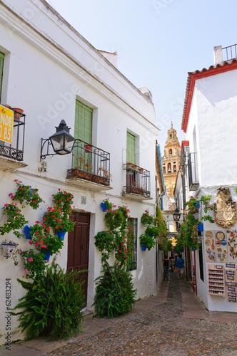 Calleja de las Flores at the La Juderia in Cordoba, Spain