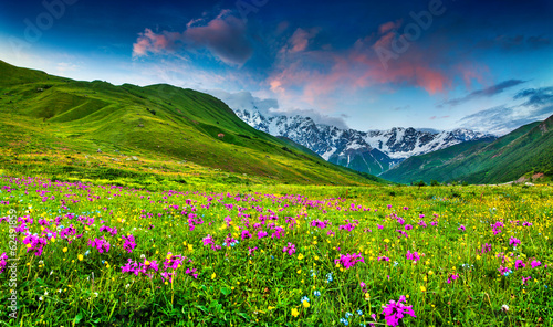 Photo  Beautiful view of alpine meadows in the Caucasus mountains