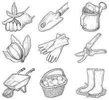 Vector Set Of Garden Icons At At Engraved Style