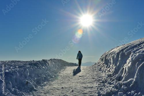 Fotografie, Obraz  Dolomiti, Trentino Alto Adige, passeggiata nella neve