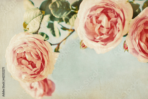 Vintage roses. Retro. Greeting card - 62552271