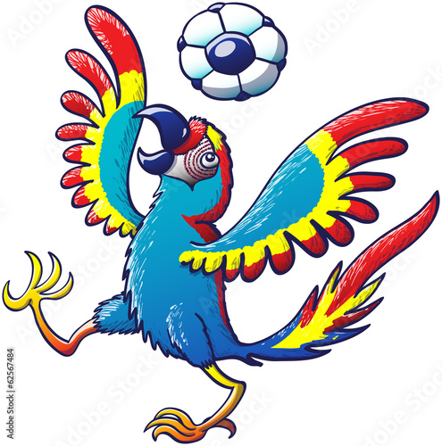 Photo Stands Draw Cool macaw playing with a soccer ball on its head