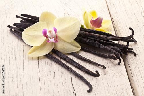 wanilia-wtyka-z-kwiatem