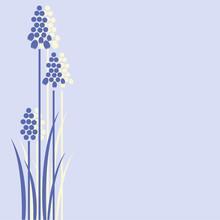 Three Grape Hyacinths Design
