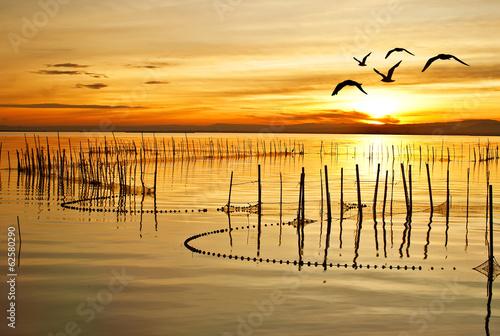 Obraz Złoty zachód słońca - fototapety do salonu