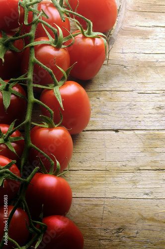 Photo  Pomodoro piccadilly Bunch of Piccadilly tomatoes
