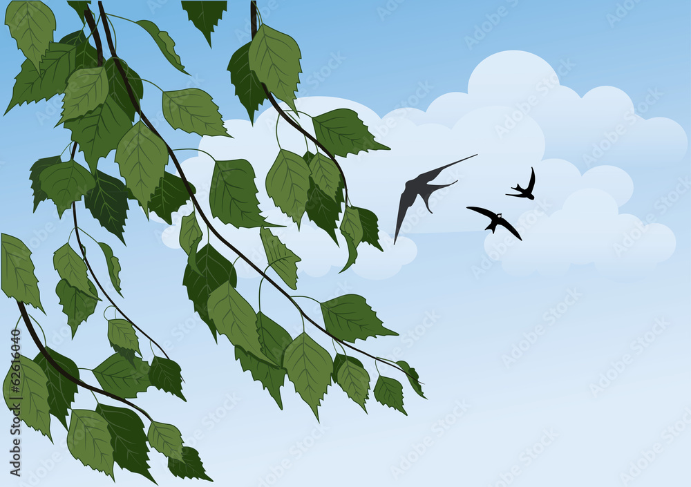 summer landscape with birch trees, blue sky and swallows