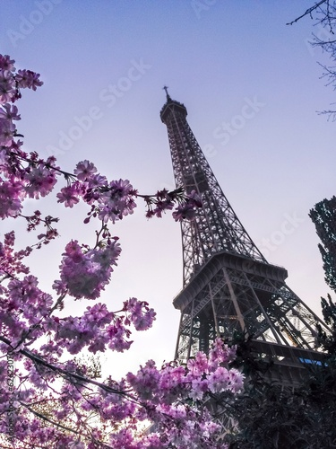 Eiffel Tower with Spring flowers