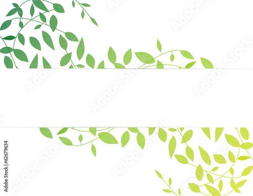 Fotografía  Leaf Pattern