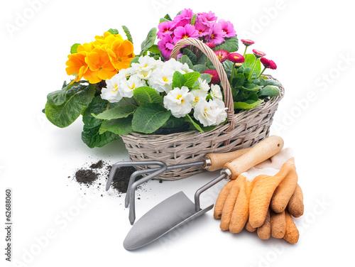 Valokuva Gardening