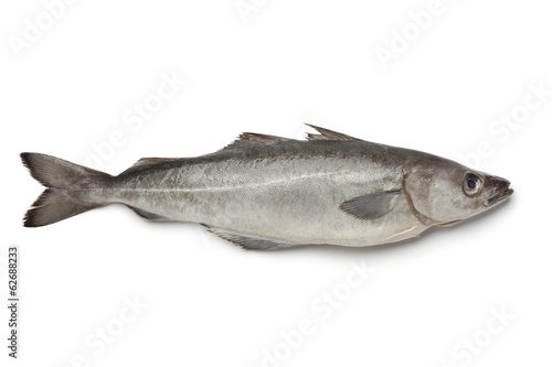 La pose en embrasure Poisson Fresh atlantic pollock fish