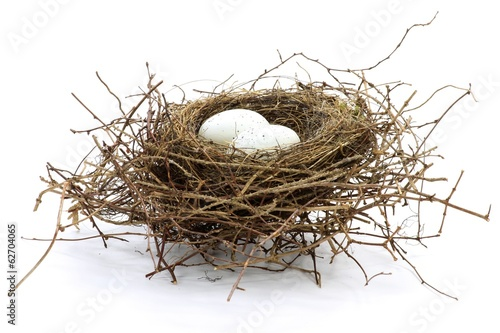 Fotografia, Obraz  Vogelnest mit 2 Eiern isoliert auf weißem Hintergrund