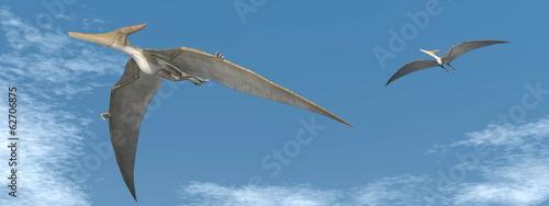 Naklejka premium Pteranodon latające dinozaury - renderowania 3D