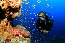 Scuba Diver And Scorpionfish