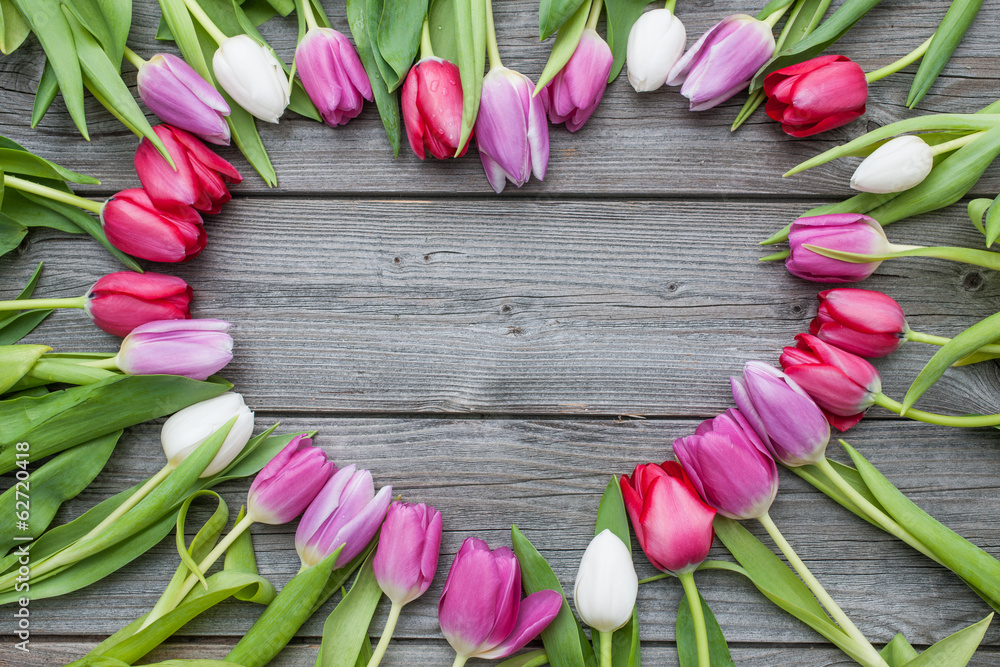 Fototapety, obrazy: Frame of fresh tulips arranged on old wooden background