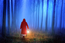 Little Red Riding Hood In The ...