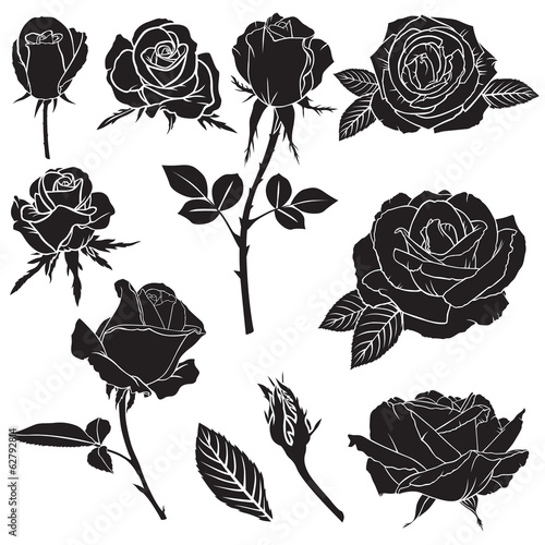 Silhouette lush rose flowers set Poster