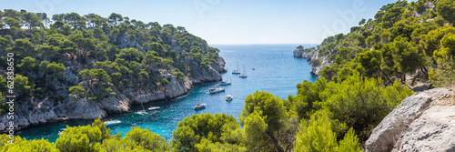 Fotomural  Calanques of Port Pin in Cassis