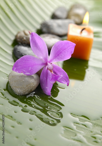 rozowa-orchidea-i-kamienie-z-zolta-swieczka-na-mokrym-bananowym-lisciu
