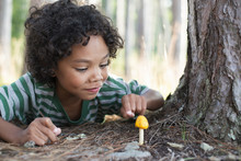 Boy Looking At Yellow Mushroom Growing In Forest