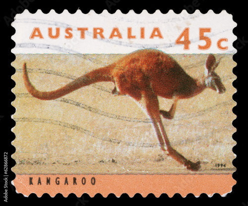 Fotografia  Stamp printed by Australia, shows kangaroo, circa 1994