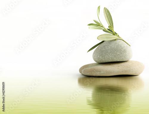 Fotografia  Ramo di ulivo su ciottoli di pietra e riflesso d'acqua