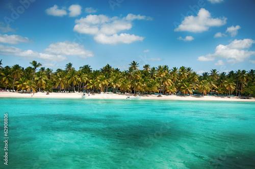 Foto op Plexiglas Caraïben Wonderful palm coastline of Saona Island, Caribbean