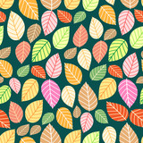 pattern of multi-colored leaves