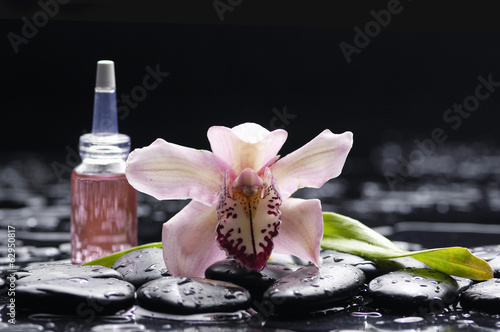 Poster Spa gorgeous orchid ,massage oil, leaf and zen stones