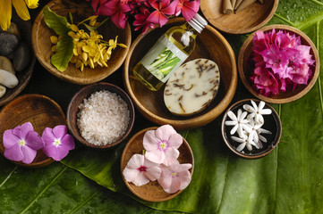 Health spa with green leaf