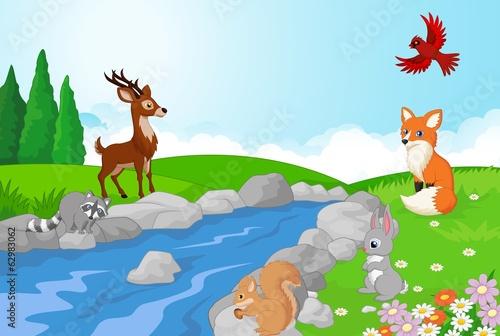 natury-krajobrazowy-tlo-z-dzikimi-zwierzetami