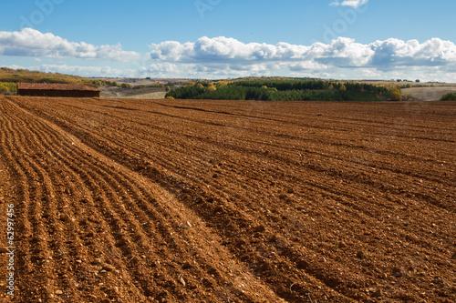 Fotografie, Obraz  Paisaje de Campo Labrado