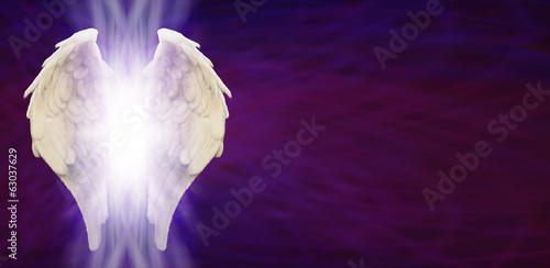 Fotografia, Obraz  Angel Wings Banner Head on Purple Matrix
