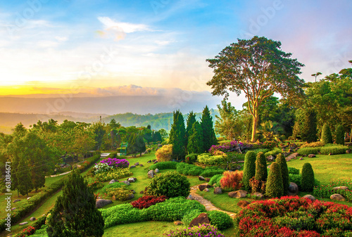 Beautiful garden of colorful flowers on hill #63084671