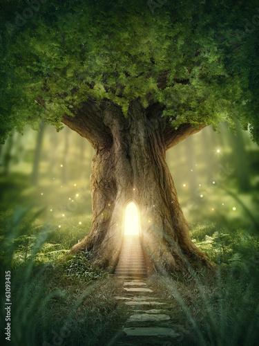 dom-drzewo-fantasy