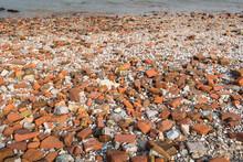 Rounded Stones Washed Ashore