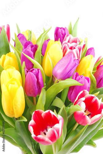 Fototapety, obrazy: bouquet of tulip flowers