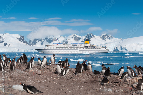 Foto auf Gartenposter Antarktika Antarctica penguins and cruise ship
