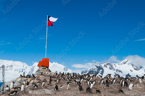 Poster Antarctica Chilean base Antarctica flag flying