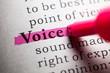 Leinwandbild Motiv voice