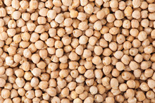Dry Organic Chickpeas Background