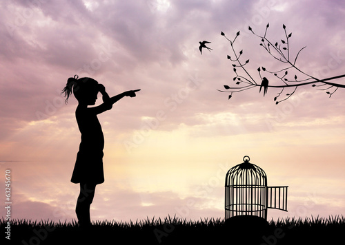 Fotografie, Obraz  girl with bird cage at sunset