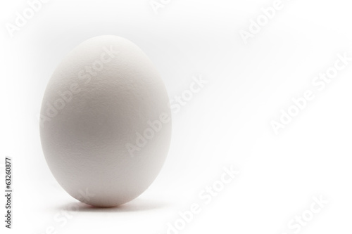 Fotografie, Obraz  Single egg