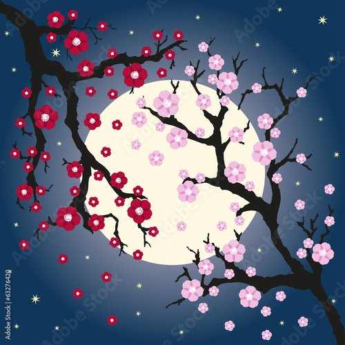 Vector illustration of oriental cherry and moon