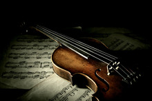 Old Scratched Violin In Shadow