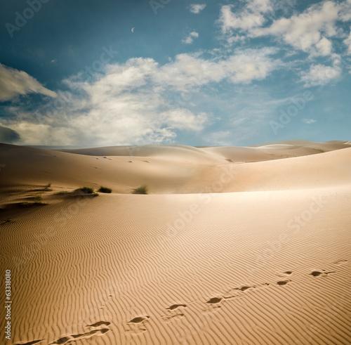 Staande foto Afrika Sahara dunes