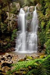 Panel SzklanyMinnamurra Falls