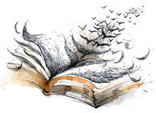Ancient Book